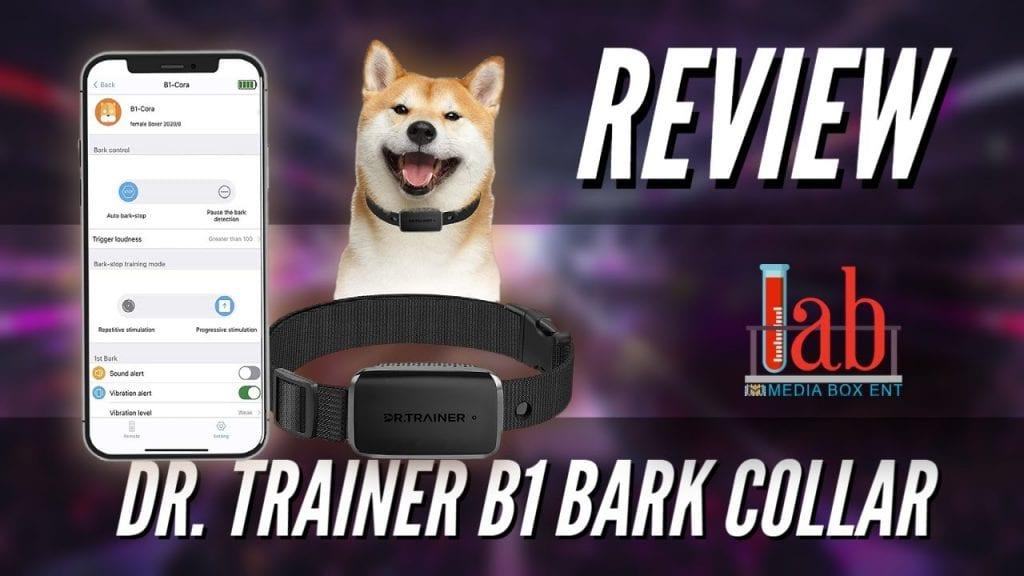 Dr. Trainer B1 bark collar - no shock
